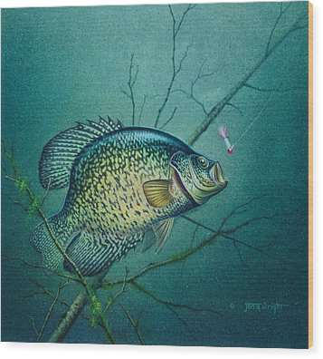 Wood Print featuring the painting Crappie And Pink Jig by Jon Q Wright