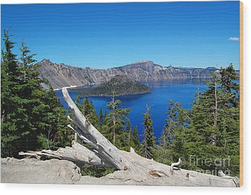 Crater Lake And Fallen Tree Wood Print