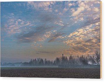 Crawling Mist Wood Print by Tgchan
