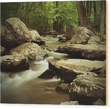 Creek At St. Peters Wood Print by Michael Porchik