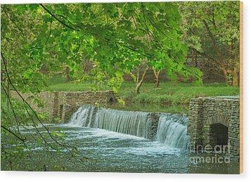 creek at Valley Forge Wood Print by Rima Biswas