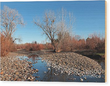 Creek Bed Wood Print by David Taylor