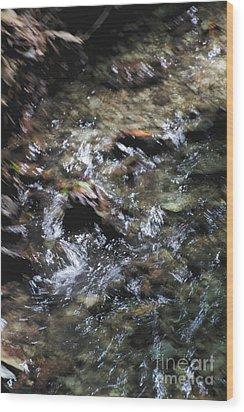 Creek Bed Wood Print by William Norton