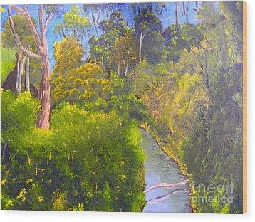 Creek In The Bush Wood Print by Pamela  Meredith