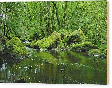 Creek In The Woods Wood Print by Chevy Fleet