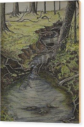 Creek  Wood Print by Janet Felts
