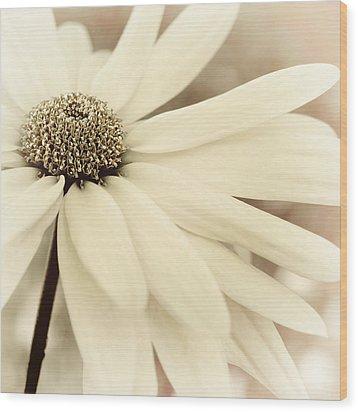 Creme Fraiche Wood Print