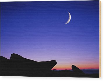 Crescent Moon Halibut Pt. Wood Print