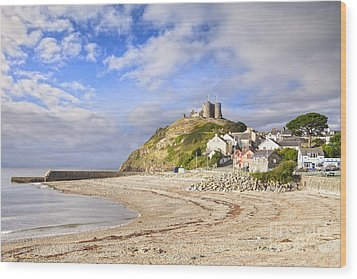 Criccieth Castle North Wales Wood Print by Colin and Linda McKie