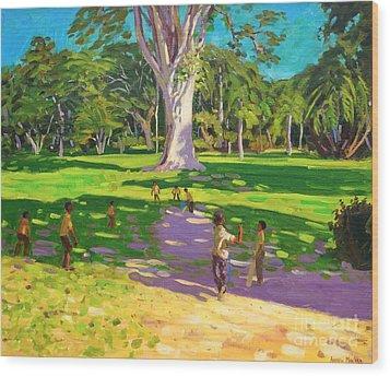 Cricket Match St George Granada Wood Print by Andrew Macara