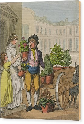 Cries Of London The Garden Pot Seller Wood Print by Thomas Rowlandson