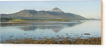 Croagh Patrick Ireland's Holy Mountain Wood Print by Jane McIlroy