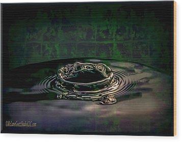 Croc Splash Wood Print by LeeAnn McLaneGoetz McLaneGoetzStudioLLCcom