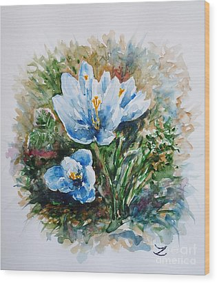 Crocuses Wood Print by Zaira Dzhaubaeva