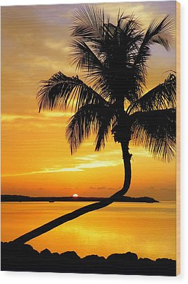 Crooked Palm Wood Print by Karen Wiles