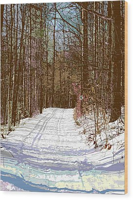 Wood Print featuring the photograph Cross Country Trail by Nina Silver