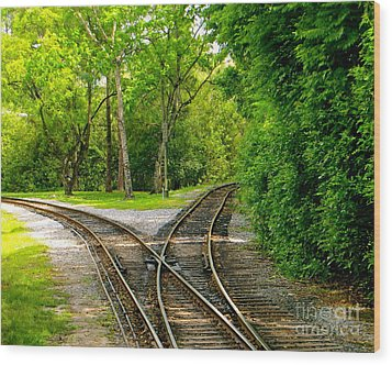 Wood Print featuring the photograph Crossing The Lines by Joy Hardee