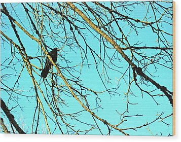 Wood Print featuring the photograph Crow by Kjirsten Collier
