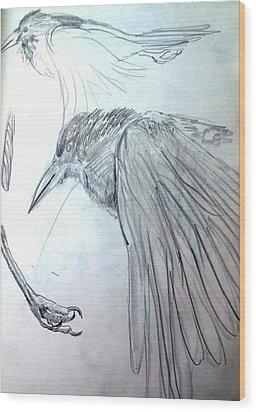 Crow Pencil Study Wood Print by Trudi Doyle
