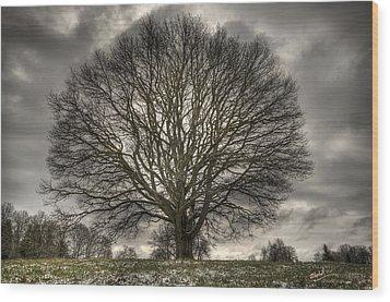Crown Jewel Wood Print by Elisabeth Van Eyken