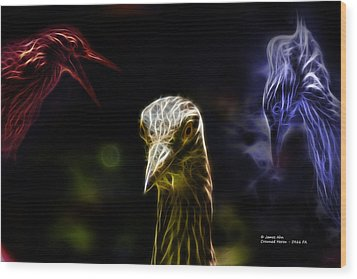 Crowned Heron - 5466 Fa Wood Print by James Ahn