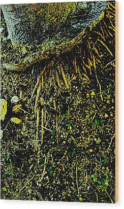 Crowned Roots With A Perspective Wood Print by Sandra Pena de Ortiz