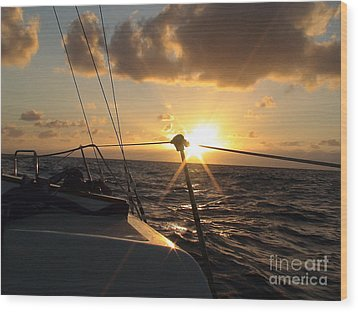 Wood Print featuring the photograph Cruising Life by Laura  Wong-Rose