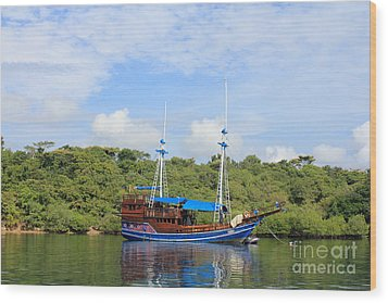 Wood Print featuring the photograph Cruising Yacht by Sergey Lukashin