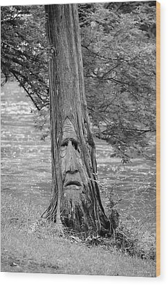 Cry Me A River Wood Print