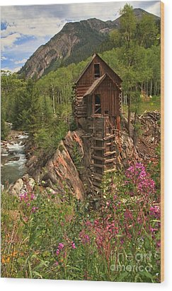 Crystal Mill Wildflowers Wood Print by Adam Jewell