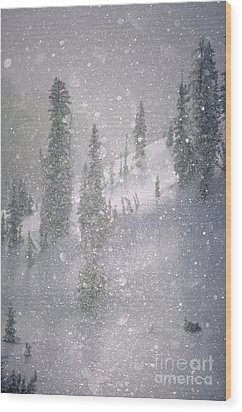Crystalized Snowflakes Falling While Being Backlit By The Sun Wood Print