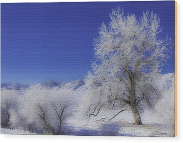 Wood Print featuring the photograph Crystalized Valley by Kristal Kraft