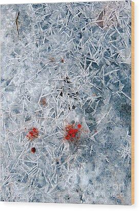 Crystallized Ice Wood Print by Marcia Lee Jones