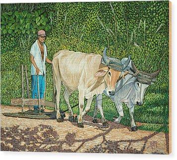 Cuban Countryman Wood Print by Manuel Lopez