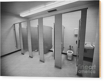 cubicle toilet stalls in womens bathroom in a High school canada north america Wood Print by Joe Fox