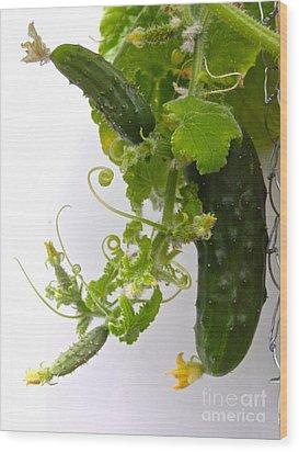 Cucumber Dance Wood Print