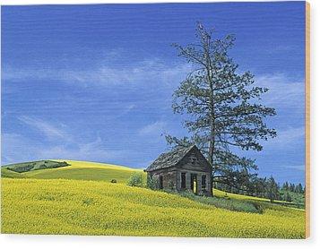 Culdasac Homestead Wood Print
