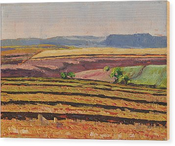 Wood Print featuring the painting Cultivated Fields Near Ficksburg South Africa Bertram Poole by Thomas Bertram POOLE