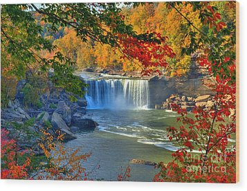 Cumberland Falls In Autumn 2 Wood Print