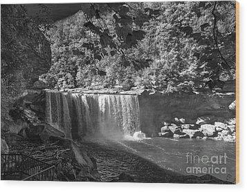 Cumberland Falls Six Bw Wood Print