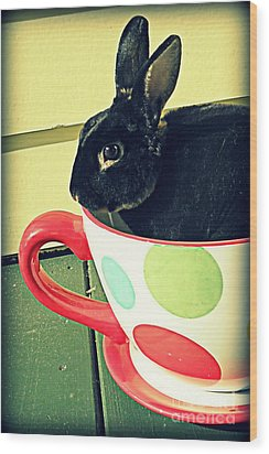 Cup O' Rabbit Wood Print by Valerie Reeves