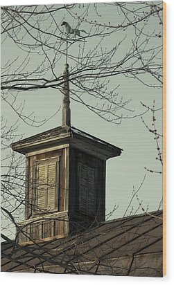 Cupola Through The Trees Wood Print by Debbie Finley