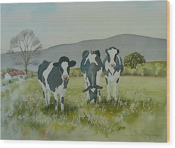 Wood Print featuring the painting Curious Cows by Jo Appleby