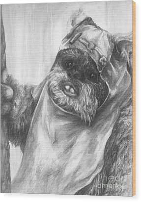 Curious Wicket Wood Print by Meagan  Visser