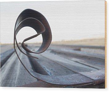 Curled Steel Wood Print by Fran Riley