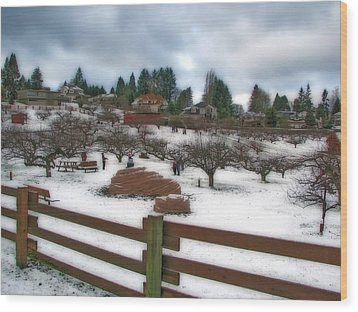 Wood Print featuring the photograph Curran Apple Orchard In Orton by Chris Anderson