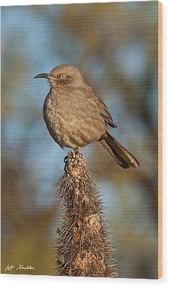 Curve-billed Thrasher On A Cactus Wood Print by Jeff Goulden
