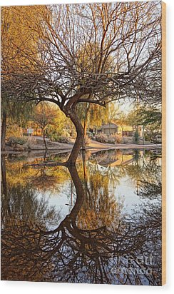 Curved Reflection Wood Print by Kerri Mortenson