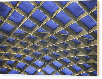 Curvilinear Skylight Structure  Wood Print by Lynn Palmer