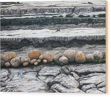 Cushion Bush Dam Wood Print by Lyndsey Hatchwell